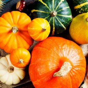 Frutta e verdura di stagione. Cosa mangiare a ottobre?